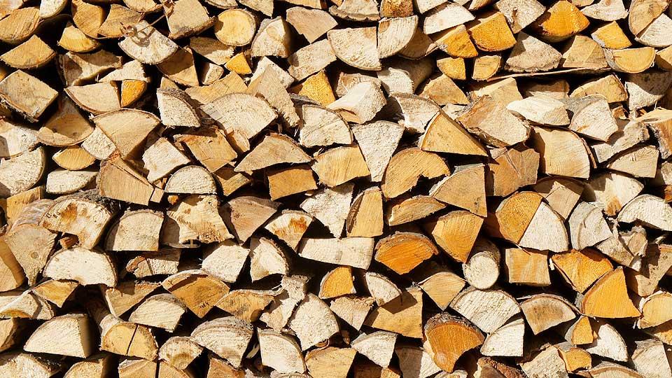 caratteristiche della legna da ardere di faggio carpino